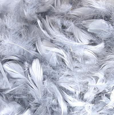 "Eleganza Feathers Mixed sizes 3""-5"" 50grm  bag Silver No.24"