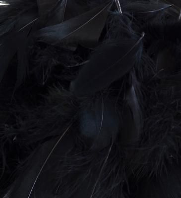 Eleganza Feathers Mixed sizes 3inch-5inch 50g bag Black No.20