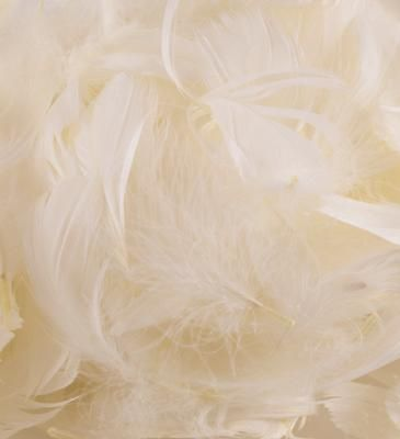 Eleganza Feathers Mixed sizes 3inch-5inch 50g bag Ivory No.61