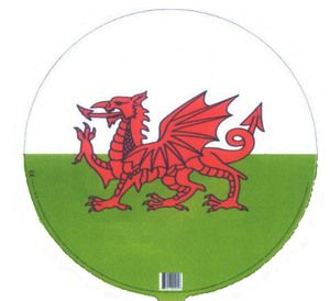 "Welsh Balloon 18"" flat offer"